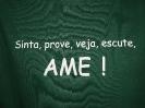 VIII AME-4
